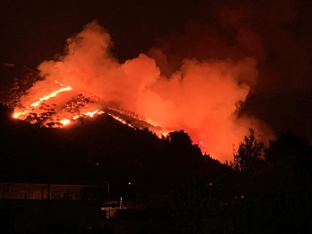 Sosteniamo Le Famiglie Colpite Dagli Incendi A Monreale
